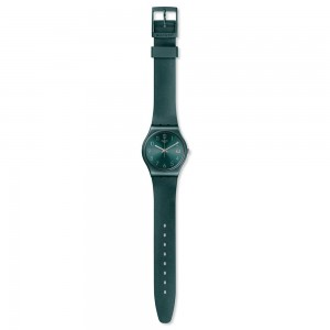 Swatch Ashbaya  GG407
